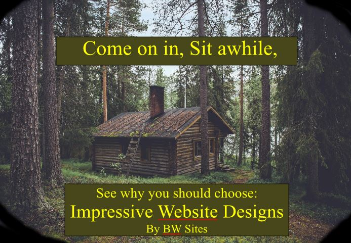 Website Design Video Thumbnail
